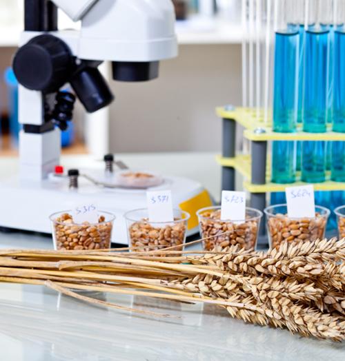 Лабораторное и Мешкозашивочное оборудование